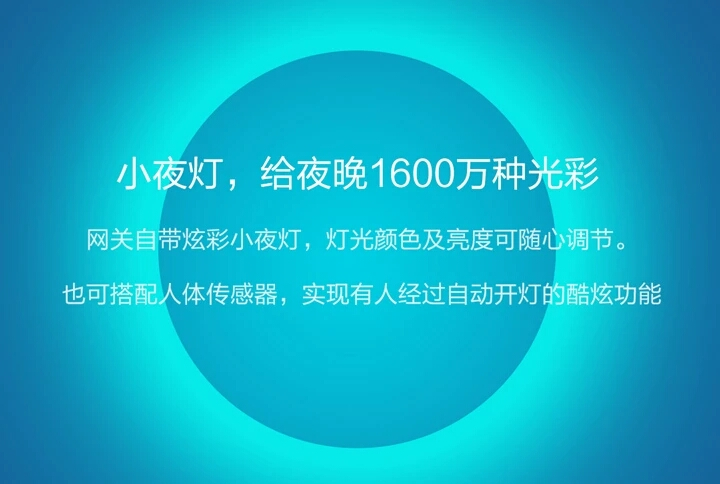 米家多功能网关 (3).jpg